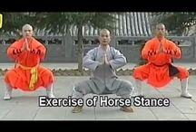 Northern Shaolin Kung Fu / by Malia Lang