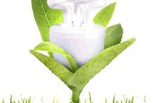 Urine Smell Removers / by How to Remove Odor | NoOdor.com