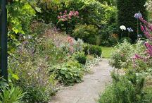 Garden Ideas / by Rachel Naylor