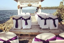 My Dream Couples Resorts Honeymoon / by Irina K
