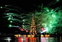 Fireworks and Celebrations / by Black Diamond Images