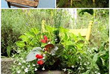 Planting & Gardening  / DIY planters and garden projects / by 3MDIY