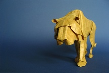 Origami / by Ned Poulter