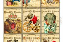 Vintage Circus / by JaRae Neumann