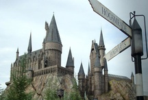 Ride Colorfully / Clearly, I'd ride through the Wizarding World of Harry Potter. / by Elizabeth Giorgi