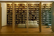 Amazing libraries / by Liz Fenton & Lisa Steinke