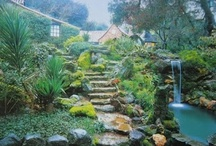 Gardens / by Mary Byrom