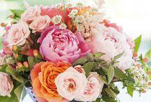 Floral loveliness  / by Megan Lipke Kenney