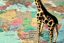 Geography / maps, geography ideas and activities for kids / by Melissa Taylor @ImaginationSoup