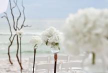 Weeding / by Deniz Bodur