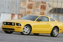 2006 Ford Mustangs / 2006 Ford Mustangs / by StangBangers