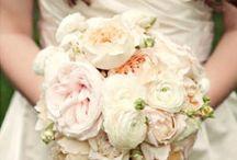 Flowers / by Rachel Hellenbrand