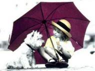Umbrellas & Parasols / by Sherry Kearney