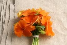 Floral / by Jennifer Mead