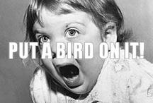 Put A Bird On It / by Portlandia TV