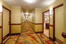 Building 3 Remodel / Building 3 Remodel is now complete! / by Winners Circle Resort