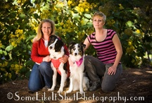 Friends Make the World a Better Place / This is mainly pictures of my friends both human and canine.  Emily Larlham and her dogs are mainly on this board.  :) Pam's Dog Academy Pamela Johnson www.pamsdogtraining.com San Diego Ca / by Pam's Dog Academy
