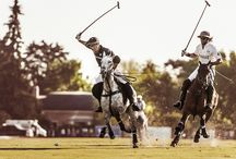 Polo. Lux, passion, lifestyle / by Olga