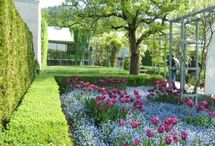 BUCKET LIST of GARDENS / Beautiful gift of color and design for the soul ! / by Barbara Jean O'Hara