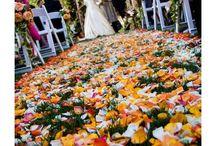 Wedding / by Dani Naza