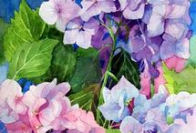 Hydrangeas / All that I love in a Hydrangea! / by Mary Grant
