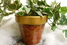 Plant Pots / by Kristi Bower