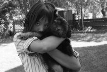 Animals / by Ryan McKenzie