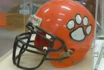 I LUV Winter Park High School Wildcats! / Go, Wildcats!  Did you got to Winter Park High School?  Help me add to this board!  I'll add your as a Co-Pinterest-er!  :-) / by ILuv Winter Park