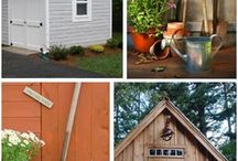 Backyard photo studio / by Sarah Johnson