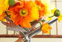 Frugal Decor from Gardening Tools / by Frugal Decorating Diva