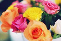 flowers / by Karen Cooper