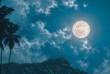 Moonlight / by Burghard Höhn