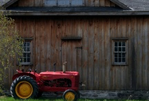 Tractor Time / by Midge Turner
