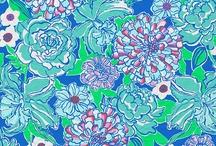 She's a Lilly kinda girl / by Lauren Karaus