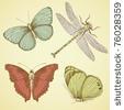 Butterflies / by Cammie Wilson