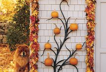 Fall Decorating / by Carrie Duffy