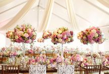 Wedding Ideas / by Katie O'Connell