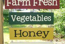 Farm business / by Malinda Royce