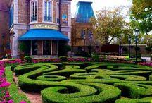 Maze Garden / by diana galvez