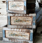 Shop / by Melissa Swecker (Melissa Swecker Photography)