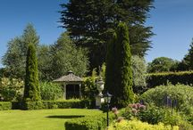 Summertime in the Garden / Enjoy the glorious Summer sunshine in some of Irelands beautiful gardens situated in Maldron and Partner Hotels / by Maldron Hotels & Partner Hotels