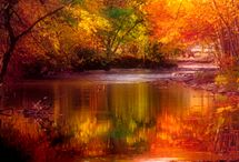Autumn / by Cindy Beckstrom