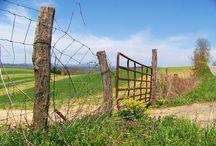 Fences - Vallas - Verjas / Don't fence me in ...  / by Gloria Villamarzo