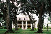 Southern Style / by William A Finch