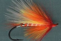 Flies for fly fishing / by Bill Hv