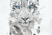 Watercolor / by Alberto Padilla Lsa