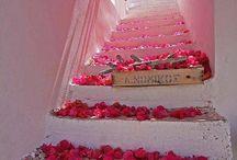 Romance / by Marshay Maxine
