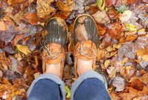 Autumn  / One of my favorite times of the year, so many great things about it...Halloween, pumpkins, Thanksgiving, crock pot cookin, leaves changing colors, cool weather, boots, scarves...need I say more? / by Leslee Kistler
