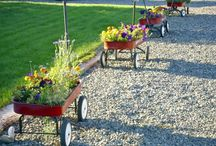 Gardening Containers / Ideas to confuse gophers / by Sherri Joseph