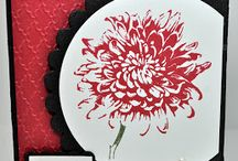 Paper cards - flowers- dahlia / by Susan Harwell Hendrick